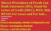 Providers of Fresh Cut BG,  SBLC and MTN